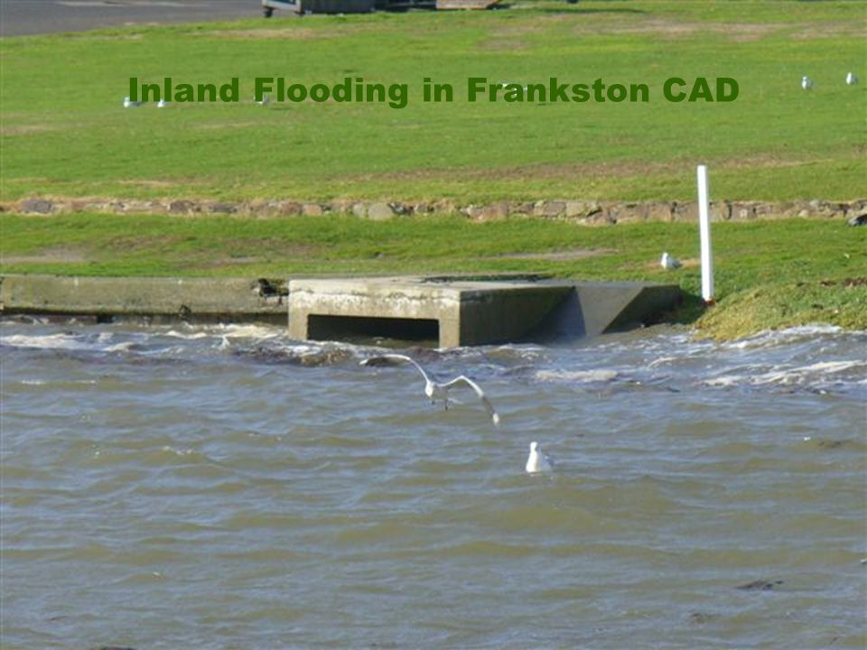 Inland Flooding in Frankston CAD