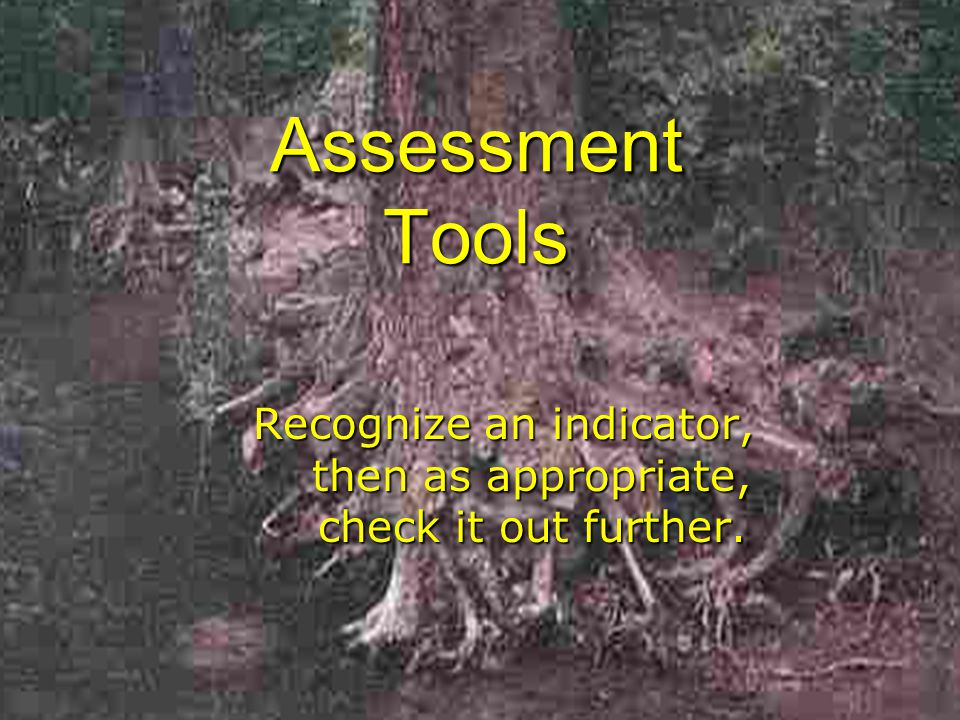 Assessment Tools Recognize an indicator, then as appropriate, check it out further.