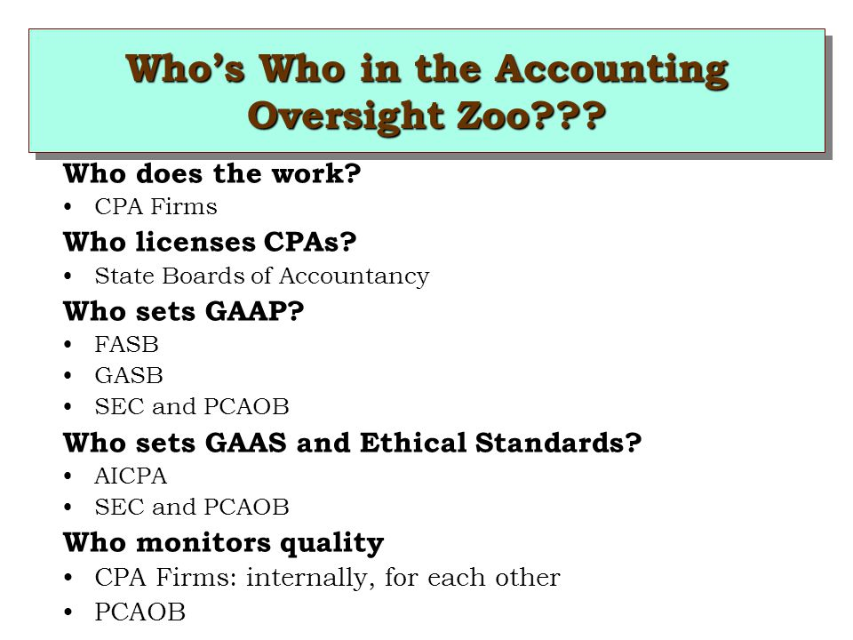 Who's Who in the Accounting Oversight Zoo??. Who does the work.