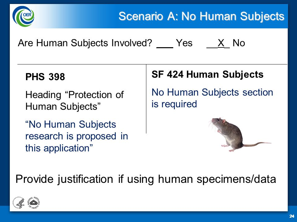 24 Scenario A: No Human Subjects Are Human Subjects Involved.