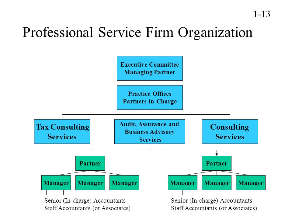 Professional Service Firm Organization Executive Committee Managing Partner Practice Offices Partners-in-Charge Consulting Services Audit, Assurance and Business Advisory Services Tax Consulting Services Partner Manager Senior (In-charge) Accountants Staff Accountants (or Associates) Partner Manager Senior (In-charge) Accountants Staff Accountants (or Associates) 1-13