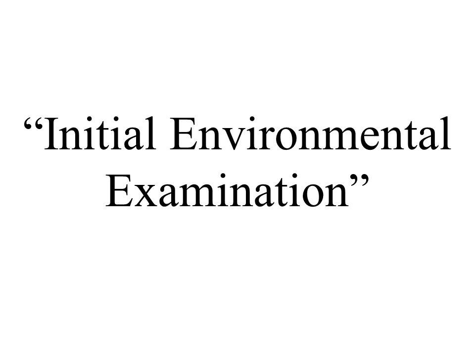 """Initial Environmental Examination"""
