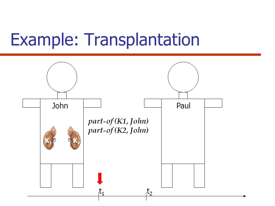 Example: Transplantation K1K1 K2K2 JohnPaul part-of (K1, John) part-of (K2, John) t 1 t 2