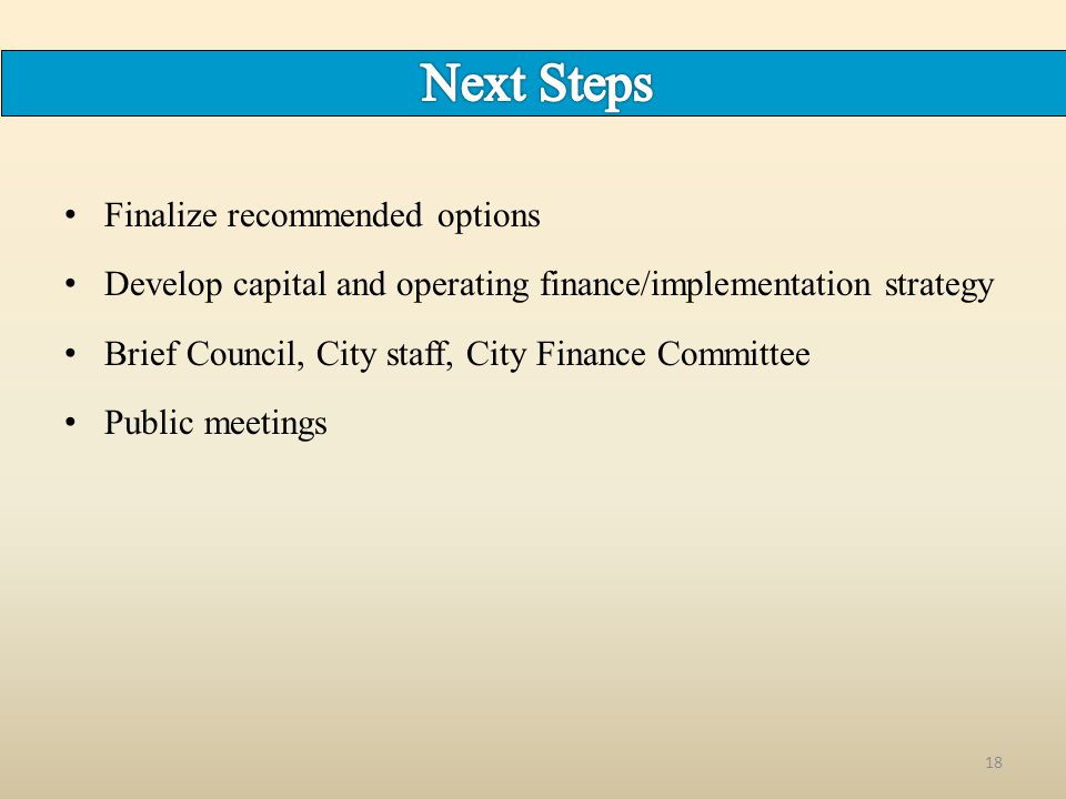 Finalize recommended options Develop capital and operating finance/implementation strategy Brief Council, City staff, City Finance Committee Public meetings 18