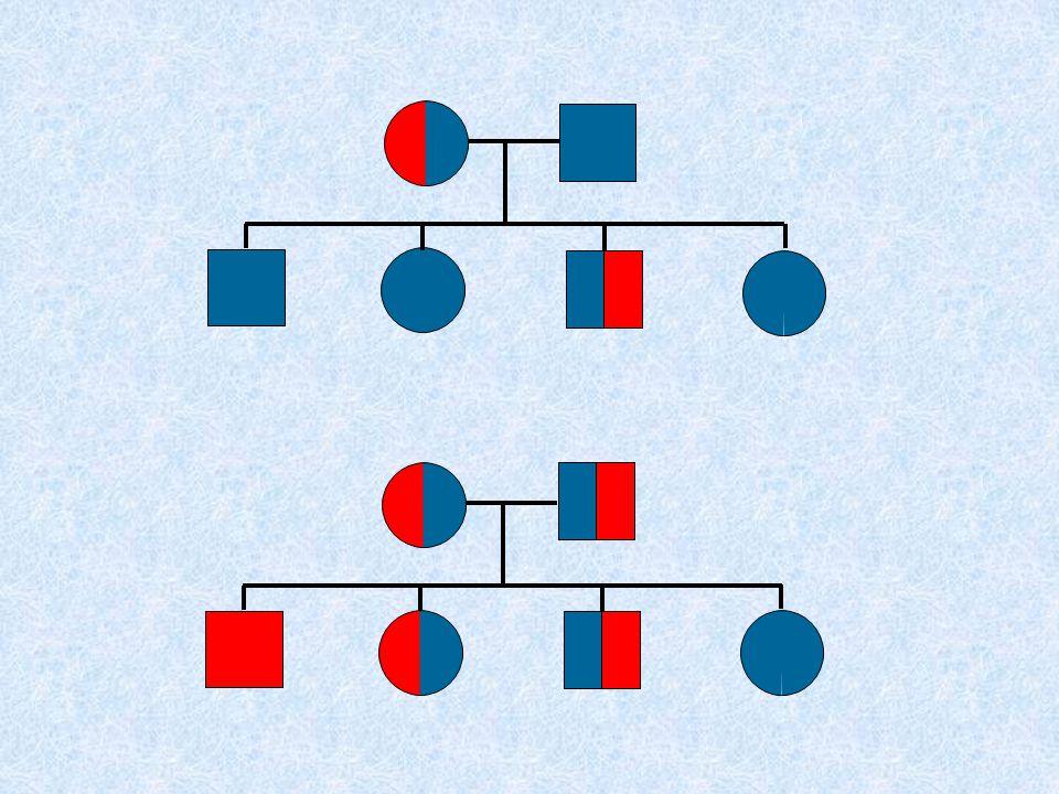 Costrutto transgenico tradizionale :  può contenere fino a 5-50 kbp  si integra casualmente in un singolo sito, sotto forma di 1-50 copie (tandem repeats)  importanza del sito di integrazione  variabilità di espressione nelle diverse linee founder