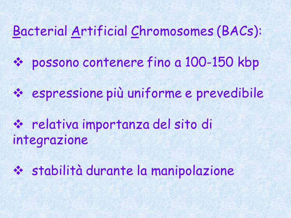 Bacterial Artificial Chromosomes (BACs):  possono contenere fino a 100-150 kbp  espressione più uniforme e prevedibile  relativa importanza del sito di integrazione  stabilità durante la manipolazione
