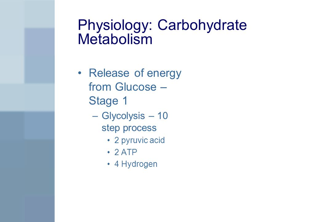 Physiology: Carbohydrate Metabolism Release of energy from Glucose – Stage 1 –Glycolysis – 10 step process 2 pyruvic acid 2 ATP 4 Hydrogen