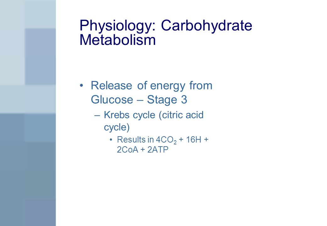 Physiology: Carbohydrate Metabolism Release of energy from Glucose – Stage 3 –Krebs cycle (citric acid cycle) Results in 4CO 2 + 16H + 2CoA + 2ATP