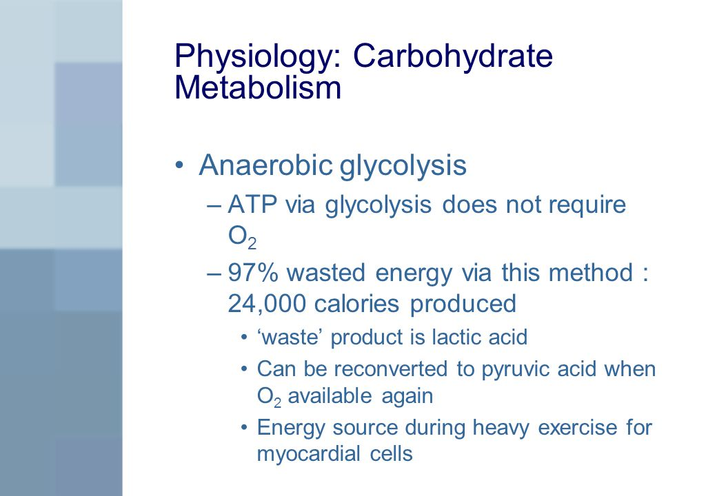 Physiology: Carbohydrate Metabolism Anaerobic glycolysis –ATP via glycolysis does not require O 2 –97% wasted energy via this method : 24,000 calories produced 'waste' product is lactic acid Can be reconverted to pyruvic acid when O 2 available again Energy source during heavy exercise for myocardial cells