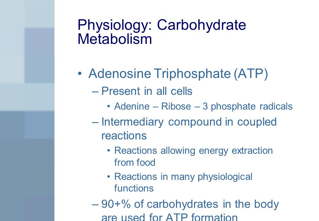 Physiology: Carbohydrate Metabolism Adenosine Triphosphate (ATP) –Present in all cells Adenine – Ribose – 3 phosphate radicals –Intermediary compound in coupled reactions Reactions allowing energy extraction from food Reactions in many physiological functions –90+% of carbohydrates in the body are used for ATP formation