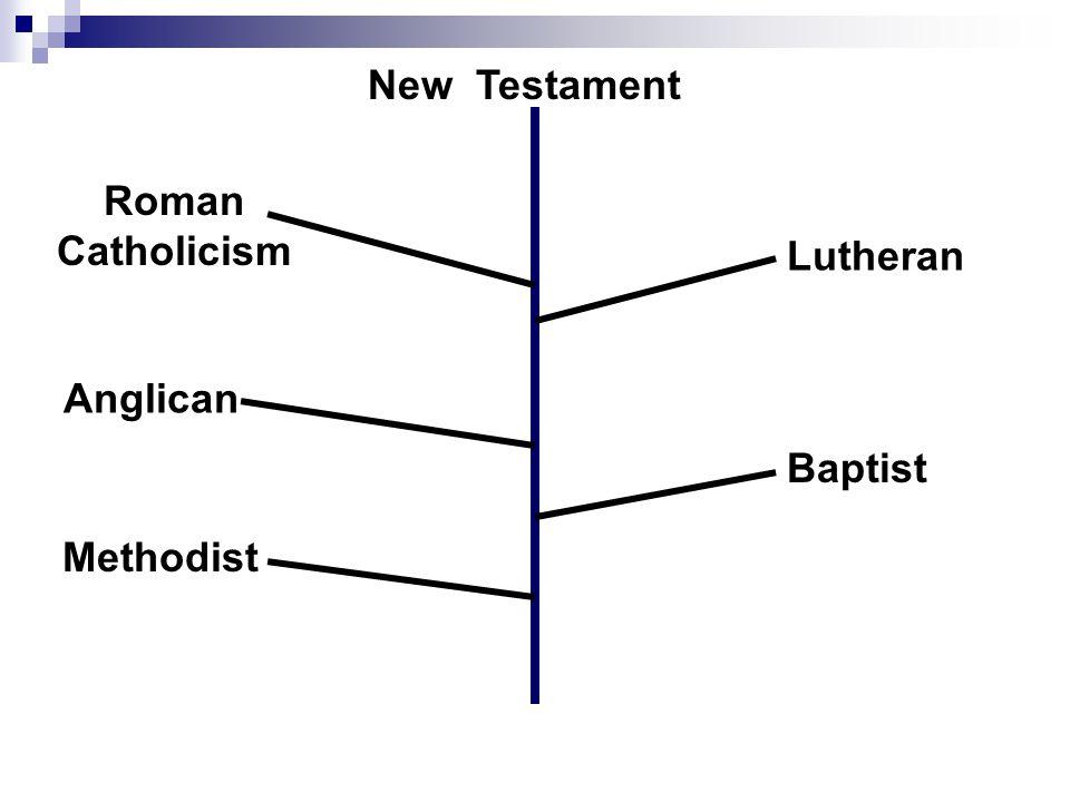 Roman Catholicism Lutheran Anglican Baptist Methodist New Testament