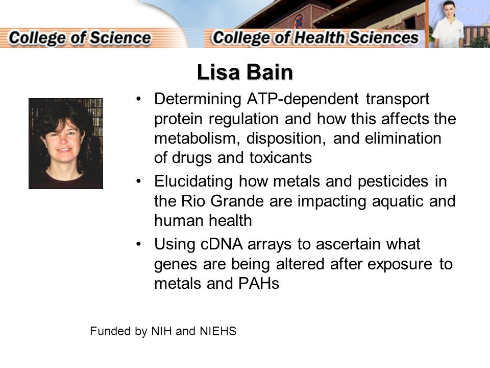 Lisa Bain Determining ATP-dependent transport protein regulation and how this affects the metabolism, disposition, and elimination of drugs and toxicants Elucidating how metals and pesticides in the Rio Grande are impacting aquatic and human health Using cDNA arrays to ascertain what genes are being altered after exposure to metals and PAHs Funded by NIH and NIEHS
