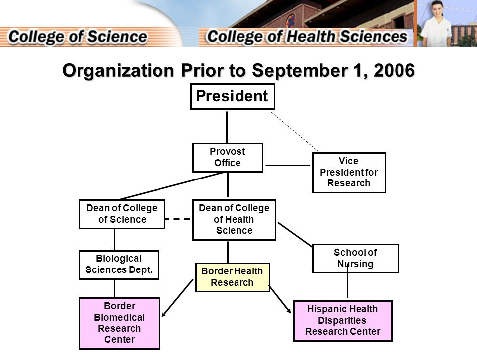 Organization After September 1, 2006 Dean of College of Health Science Dean of College of Science Border Health Research Provost Vice President for Research Border Biomedical Research Center School of Nursing Hispanic Health Disparities Research Center The Border Health Research Program integrates two centers on the campus President