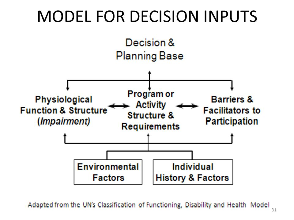 MODEL FOR DECISION INPUTS 31