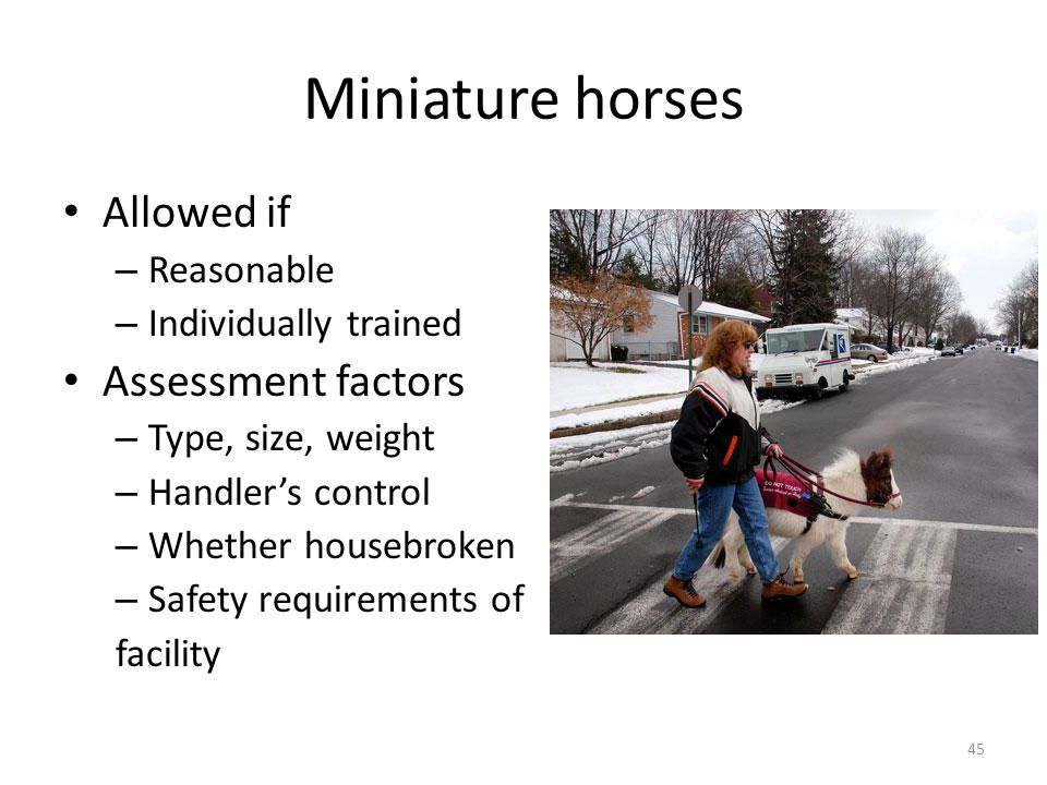 Miniature horses Allowed if – Reasonable – Individually trained Assessment factors – Type, size, weight – Handler's control – Whether housebroken – Safety requirements of facility 45