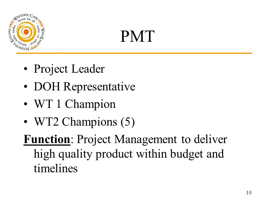 10 PMT Project Leader DOH Representative WT 1 Champion WT2 Champions (5) Function: Project Management to deliver high quality product within budget and timelines
