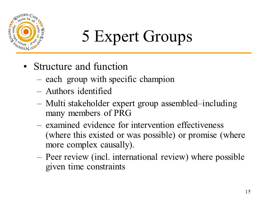 15 5 Expert Groups Structure and function –each group with specific champion –Authors identified –Multi stakeholder expert group assembled–including many members of PRG –examined evidence for intervention effectiveness (where this existed or was possible) or promise (where more complex causally).