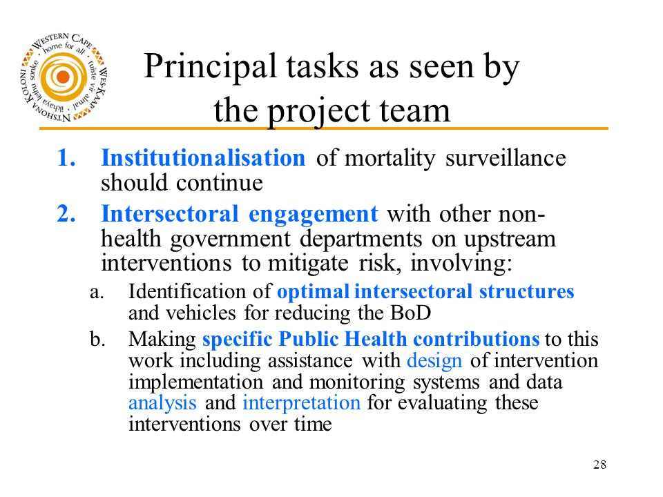 28 Principal tasks as seen by the project team 1.Institutionalisation of mortality surveillance should continue 2.Intersectoral engagement with other non- health government departments on upstream interventions to mitigate risk, involving: a.Identification of optimal intersectoral structures and vehicles for reducing the BoD b.Making specific Public Health contributions to this work including assistance with design of intervention implementation and monitoring systems and data analysis and interpretation for evaluating these interventions over time
