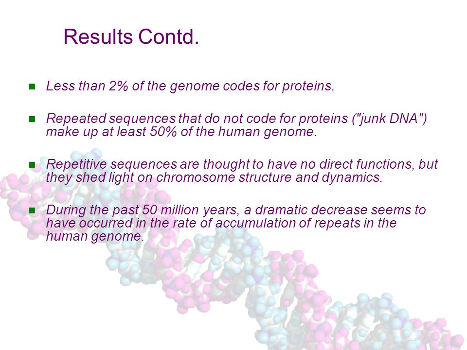 Results Contd. Less than 2% of the genome codes for proteins.