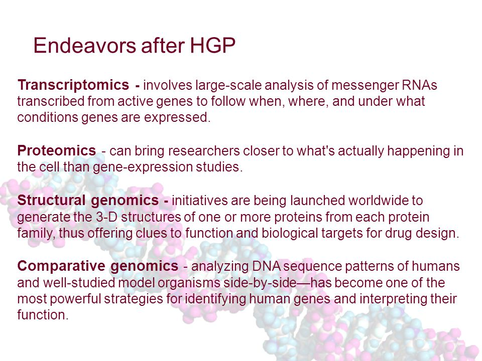 Endeavors after HGP Transcriptomics - involves large-scale analysis of messenger RNAs transcribed from active genes to follow when, where, and under what conditions genes are expressed.
