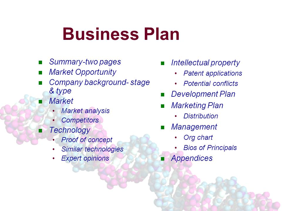 Business Plan Summary-two pages Market Opportunity Company background- stage & type Market Market analysis Competitors Technology Proof of concept Similar technologies Expert opinions Intellectual property Patent applications Potential conflicts Development Plan Marketing Plan Distribution Management Org chart Bios of Principals Appendices
