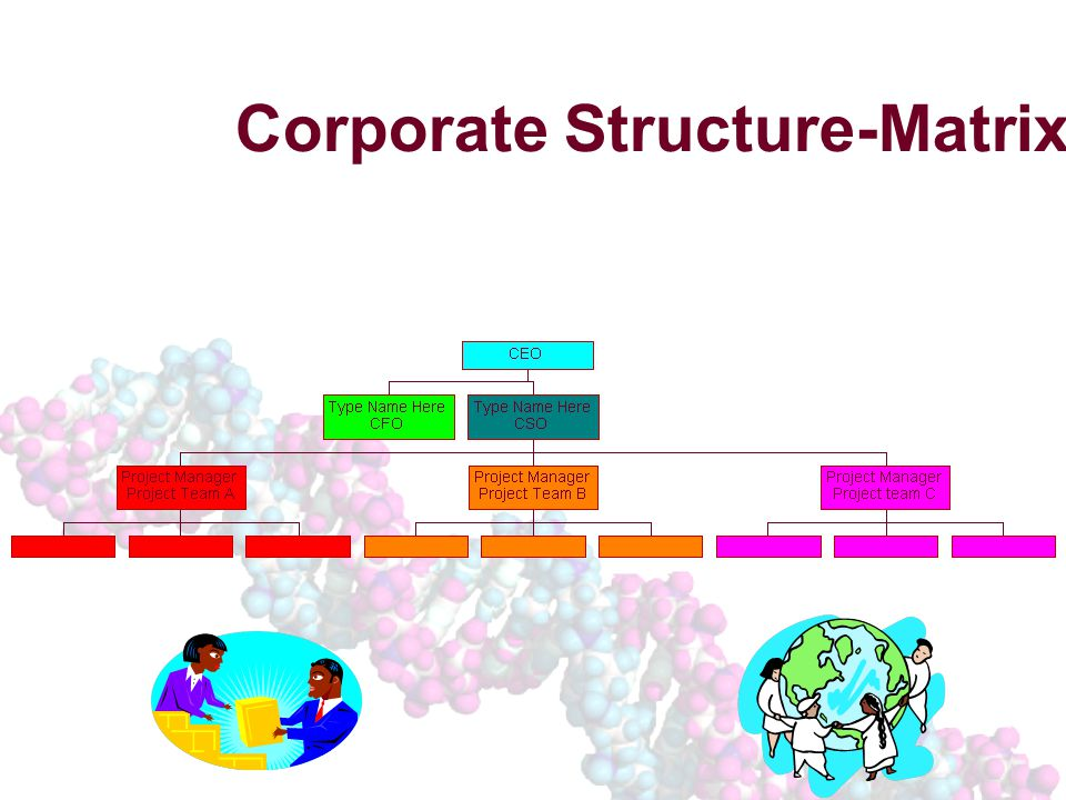Corporate Structure-Matrix