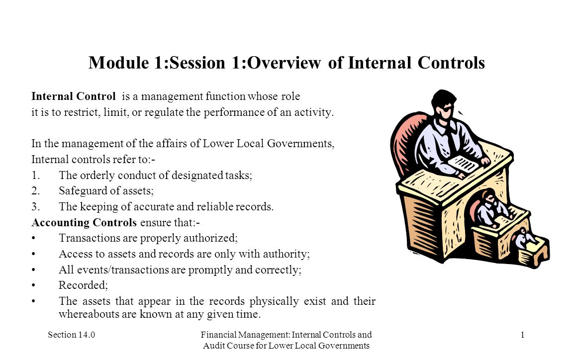 Section 14.0Financial Management: Internal Controls and Audit Course for Lower Local Governments 21 Module 2:Session 2- Examples of VFM Considerations Examples: Inputs: Drugs, 10 health workers, transport funds, etc.