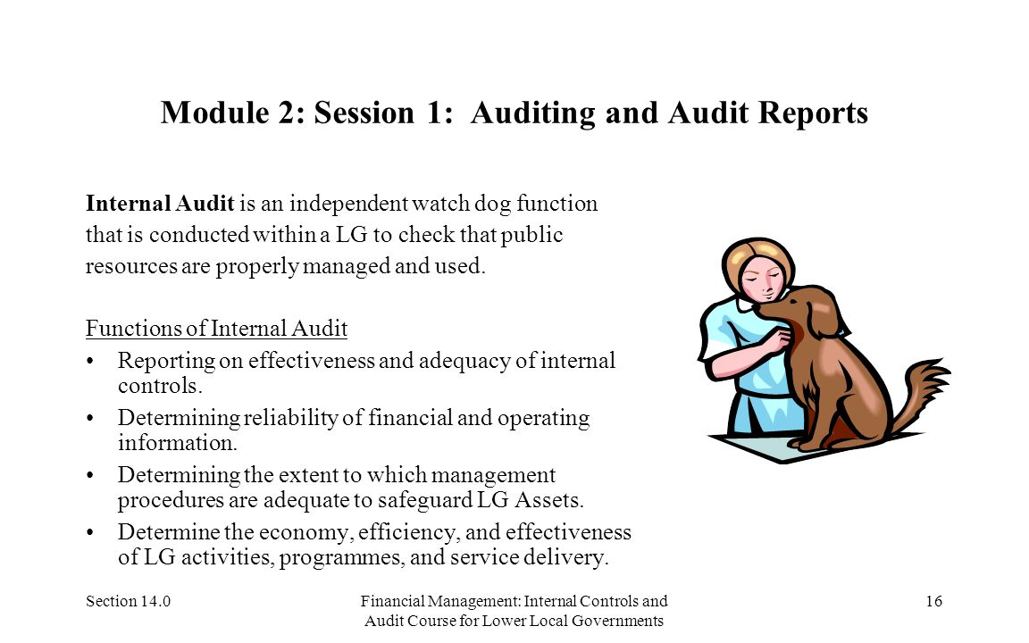 Section 14.0Financial Management: Internal Controls and Audit Course for Lower Local Governments 15 Module 1: Session 5-Asset Acquisition and Use Asse