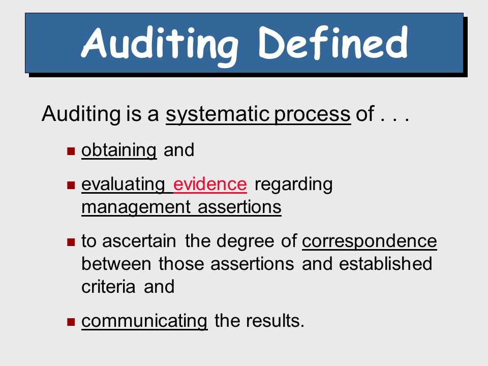 24 Generally Accepted Auditing Standards (GAAS) Guidelines for Auditors
