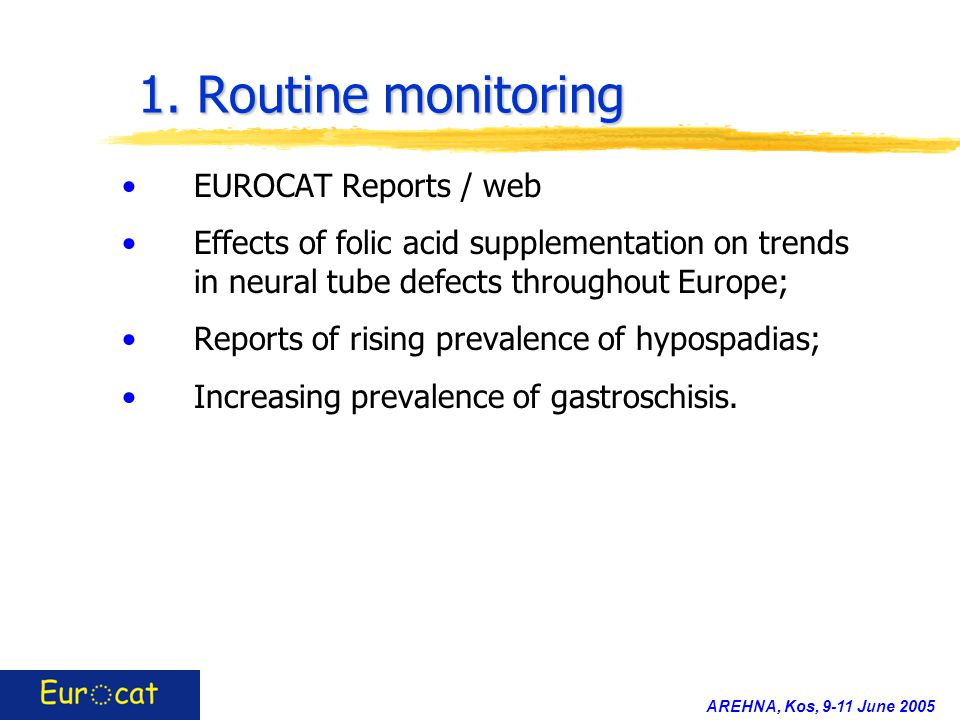 AREHNA, Kos, 9-11 June 2005 1. Routine monitoring EUROCAT Reports / web Effects of folic acid supplementation on trends in neural tube defects through