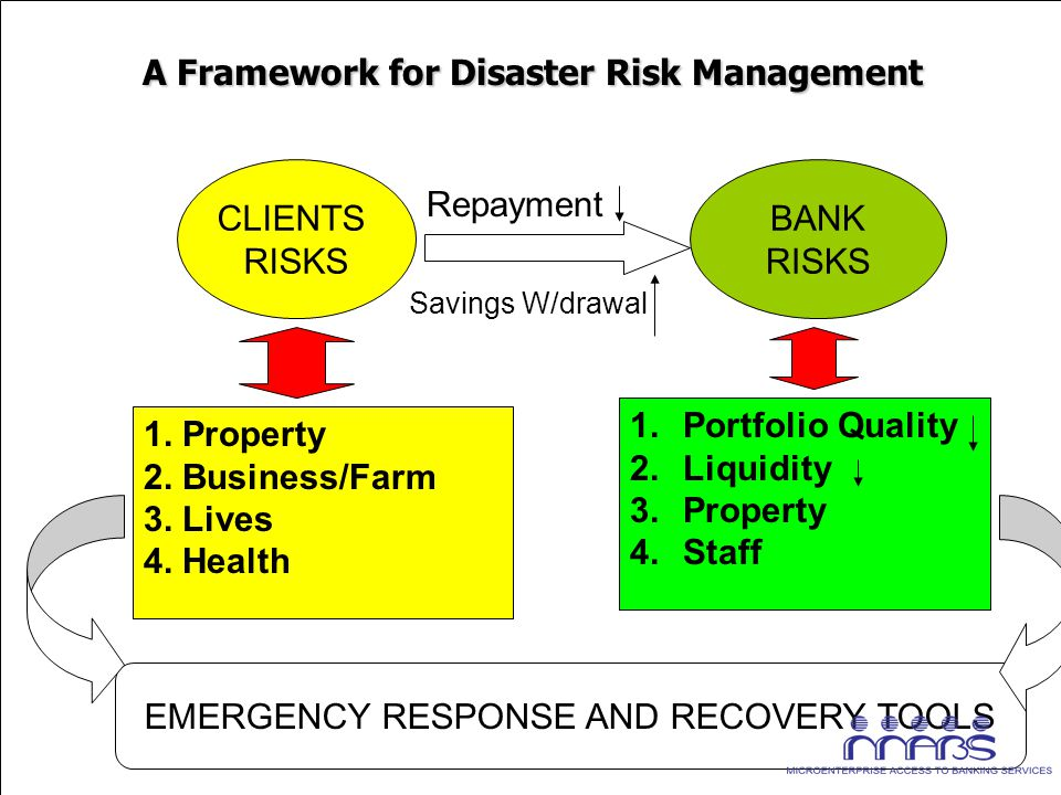 A Framework for Disaster Risk Management A Framework for Disaster Risk Management 1.Portfolio Quality 2.Liquidity 3.Property 4.Staff 1. Property 2. Bu
