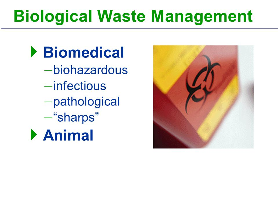 " Biomedical – biohazardous – infectious – pathological – ""sharps""  Animal"