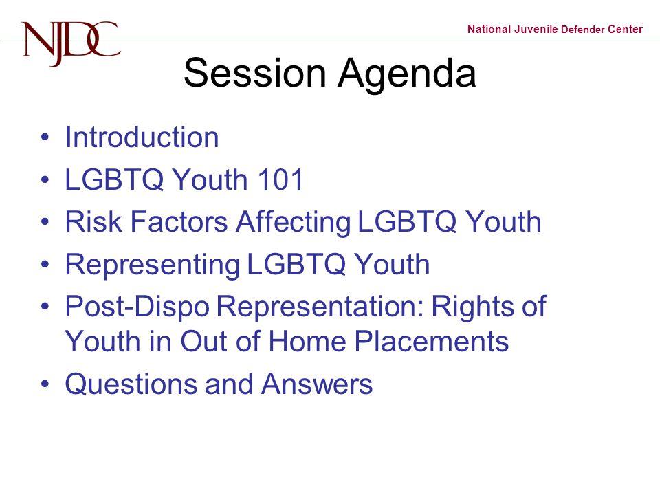 National Juvenile Defender Center Session Agenda Introduction LGBTQ Youth 101 Risk Factors Affecting LGBTQ Youth Representing LGBTQ Youth Post-Dispo R
