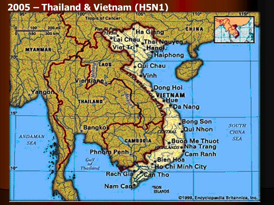 2005 – Thailand & Vietnam (H5N1)