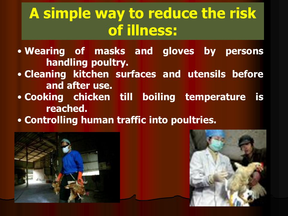 A simple way to reduce the risk of illness: Wearing of masks and gloves by persons handling poultry.