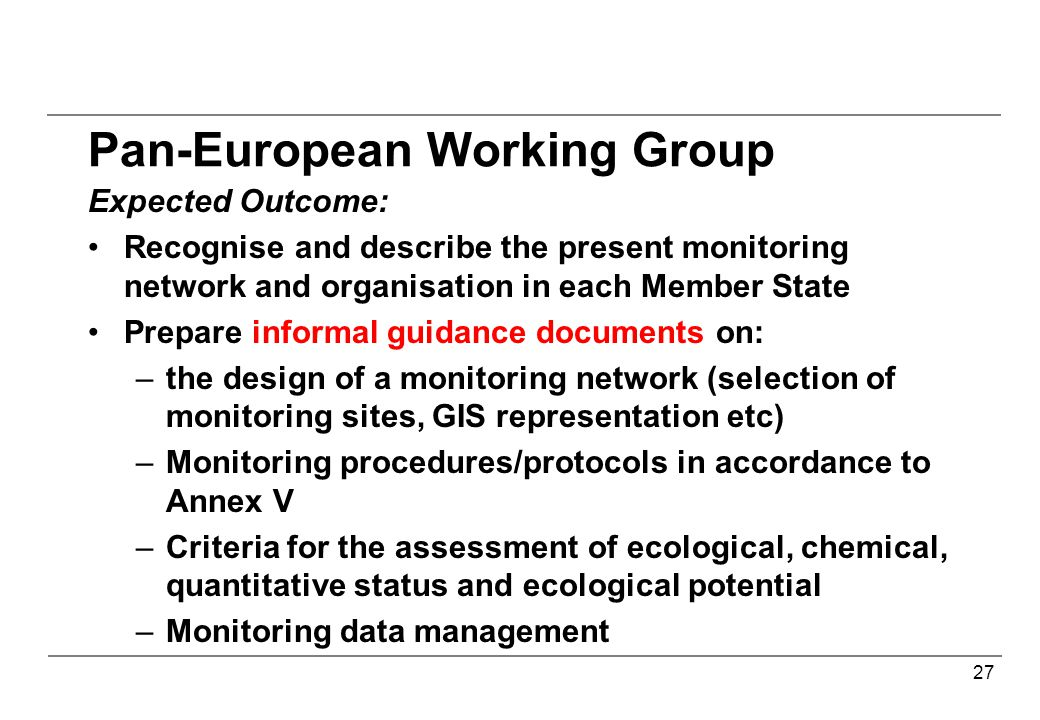 27 Pan-European Working Group Expected Outcome: Recognise and describe the present monitoring network and organisation in each Member State Prepare informal guidance documents on: –the design of a monitoring network (selection of monitoring sites, GIS representation etc) –Monitoring procedures/protocols in accordance to Annex V –Criteria for the assessment of ecological, chemical, quantitative status and ecological potential –Monitoring data management