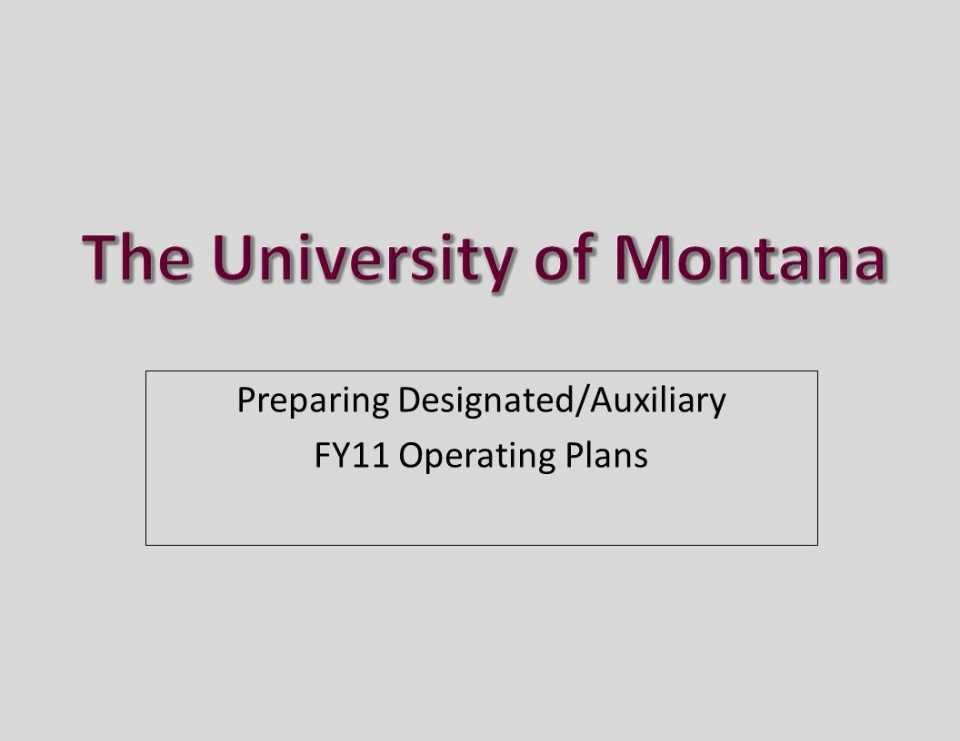 Preparing Designated/Auxiliary FY11 Operating Plans