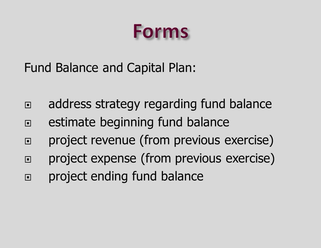 Fund Balance and Capital Plan:  address strategy regarding fund balance  estimate beginning fund balance  project revenue (from previous exercise)  project expense (from previous exercise)  project ending fund balance