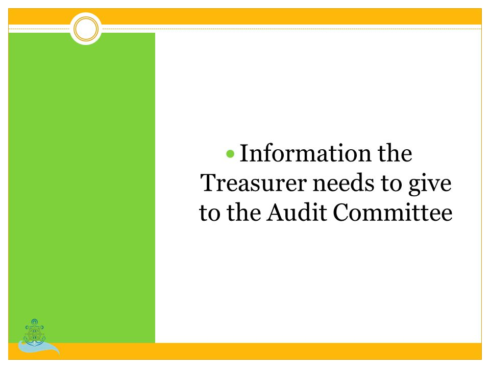 Information the Treasurer needs to give to the Audit Committee