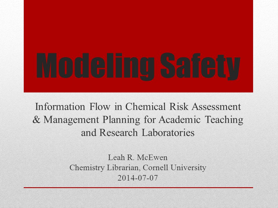 Modeling Safety Leah R.