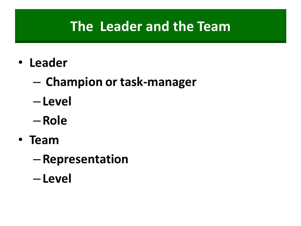 The Leader and the Team Leader – Champion or task-manager – Level – Role Team – Representation – Level