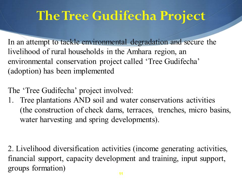 11 The Tree Gudifecha Project In an attempt to tackle environmental degradation and secure the livelihood of rural households in the Amhara region, an environmental conservation project called 'Tree Gudifecha' (adoption) has been implemented The 'Tree Gudifecha' project involved: 1.Tree plantations AND soil and water conservations activities (the construction of check dams, terraces, trenches, micro basins, water harvesting and spring developments).