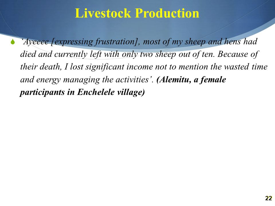 22 Livestock Production  'Ayeeee [expressing frustration], most of my sheep and hens had died and currently left with only two sheep out of ten.
