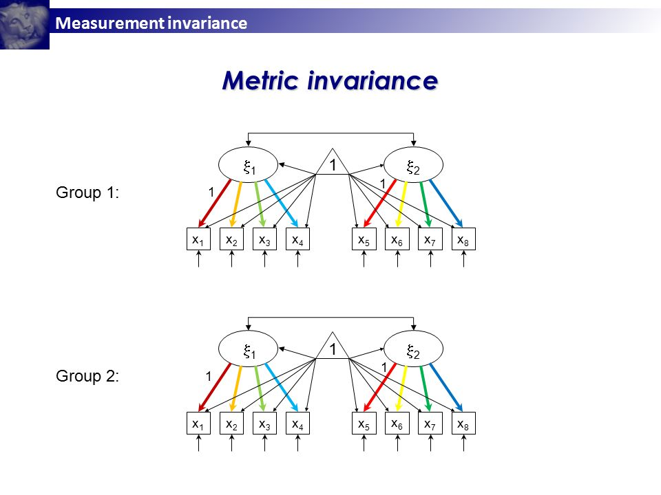 Measurement invariance x1x1 x2x2 x3x3 x4x4 x5x5 x6x6 x7x7 x8x8 11 22 1 x1x1 x2x2 x3x3 x4x4 x5x5 x6x6 x7x7 x8x8 11 22 1 Metric invariance Group 1: Group 2: 1 1 1 1