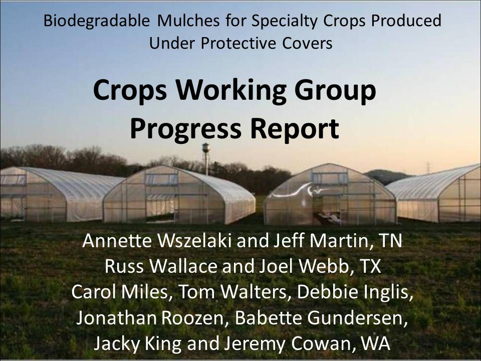 Biodegradable Mulches for Specialty Crops Produced Under Protective Covers Crops Working Group Progress Report Annette Wszelaki and Jeff Martin, TN Ru