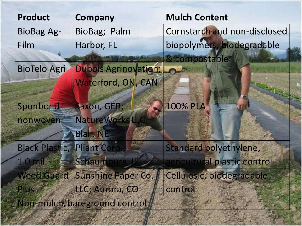 ProductCompanyMulch Content BioBag Ag- Film BioBag; Palm Harbor, FL Cornstarch and non-disclosed biopolymers, biodegradable & compostable BioTelo Agri