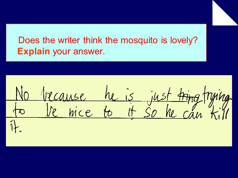 Does the writer think the mosquito is lovely Explain your answer.