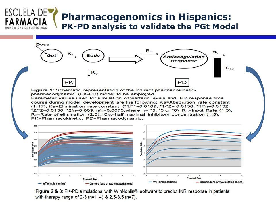 Pharmacogenomics in Hispanics: PK-PD analysis to validate the PGt Model