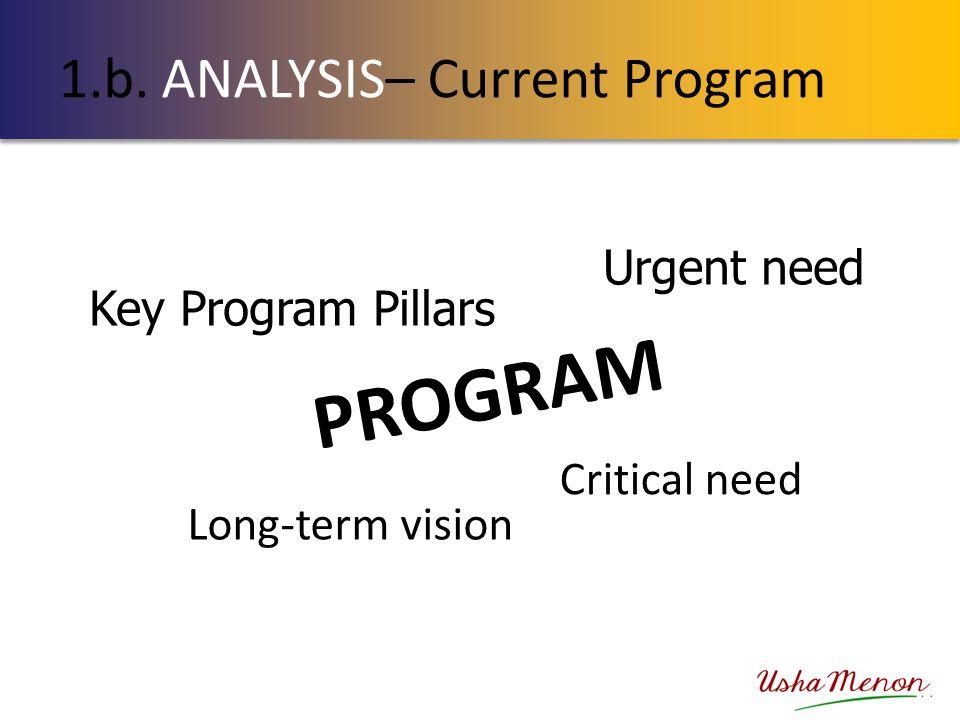 1.b. ANALYSIS– Current Program PROGRAM Key Program Pillars Long-term vision Critical need Urgent need