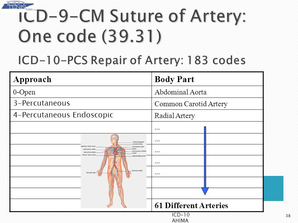 38 ApproachBody Part 0-OpenAbdominal Aorta 3-Percutaneous Common Carotid Artery 4-Percutaneous Endoscopic Radial Artery … … … … … 61 Different Arteries ICD-10-PCS Repair of Artery: 183 codes ICD-10 AHIMA